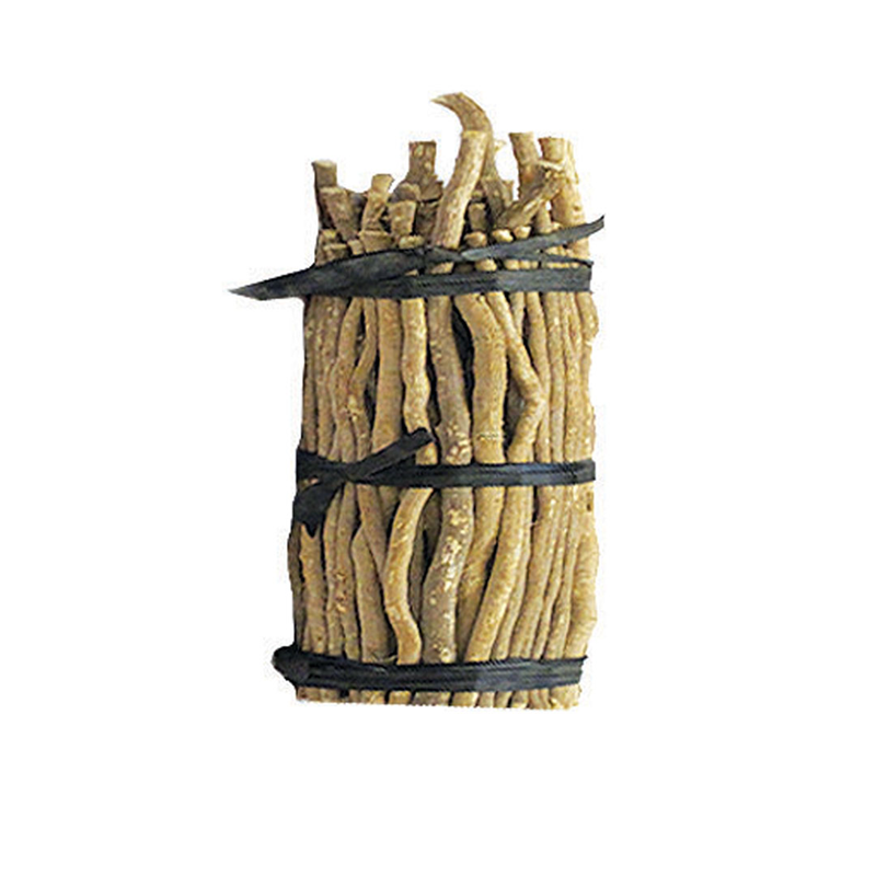 Miswak - Pilu - Toothbrush Tree