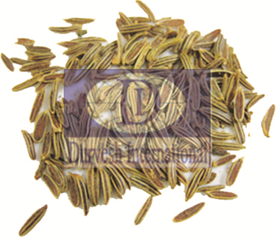 Purple Fleabonce - Black Cumin Seed